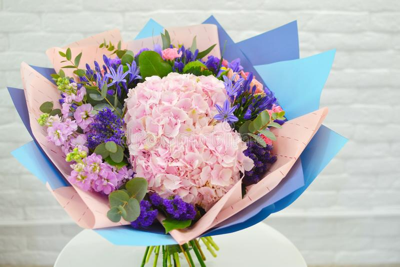 Blå och rosa blommanärbild Den naturliga vanliga hortensian blommar bakgrund royaltyfria bilder