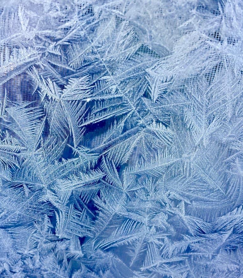 Blå och vit frostmodell på iskallt fönster royaltyfri bild