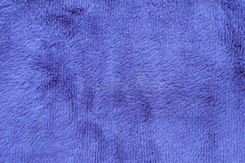 blå päls royaltyfri bild