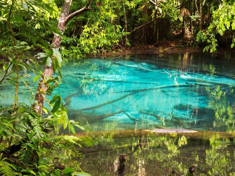 Blå pöl, liten naturlig sjö med turkosvatten, Krabi, Thailand royaltyfria bilder