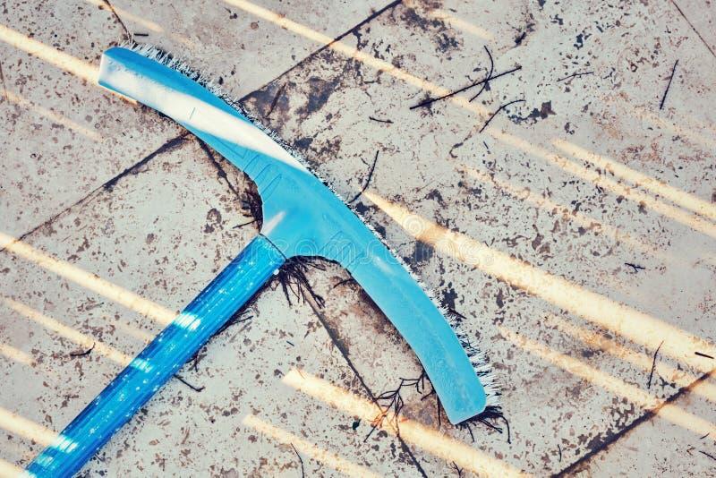 Blå pölborste fotografering för bildbyråer