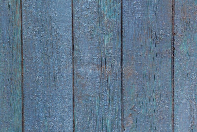 Blå plattavägg av den gamla ladugården Texturerade och skalningsblått smärtar royaltyfria bilder