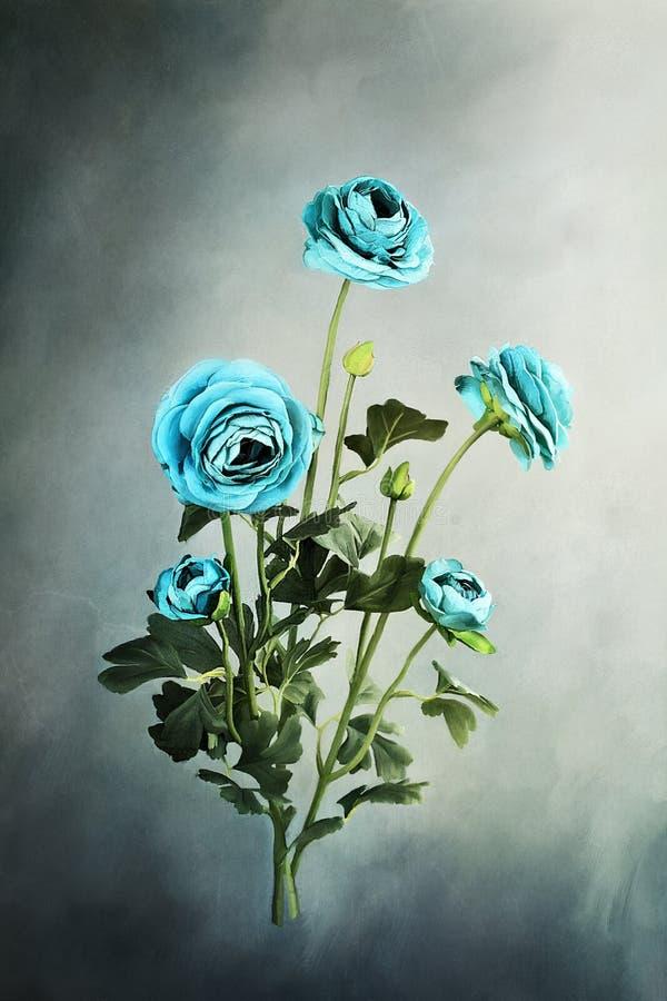 Blå Ranunculus stock illustrationer