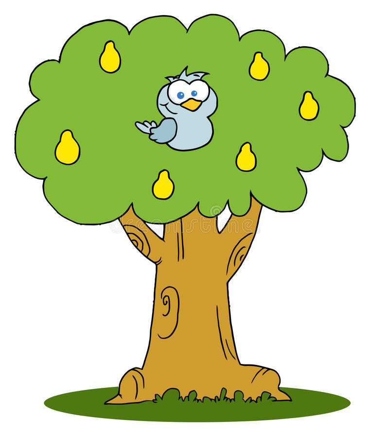 Blå rapphöna i en peartree stock illustrationer