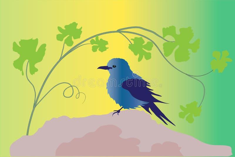 Blå rock för fågel