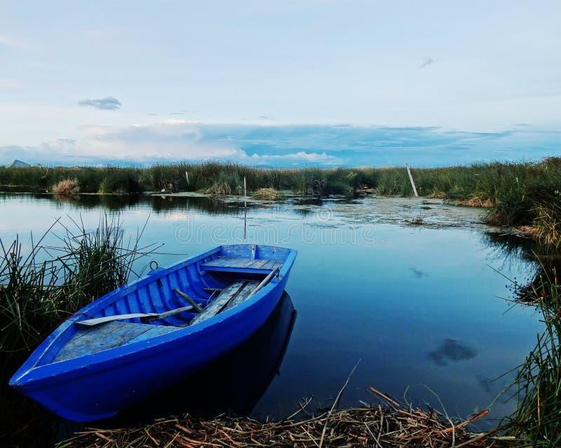 Blå roddbåt royaltyfri bild