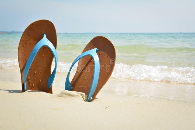 Blå sandal på stranden royaltyfria bilder