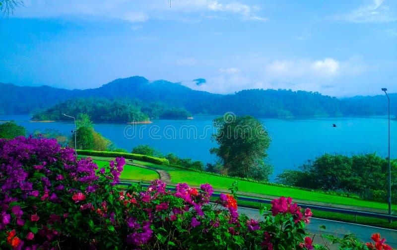Blå sjö Mountain View med härliga blommaträd royaltyfri foto