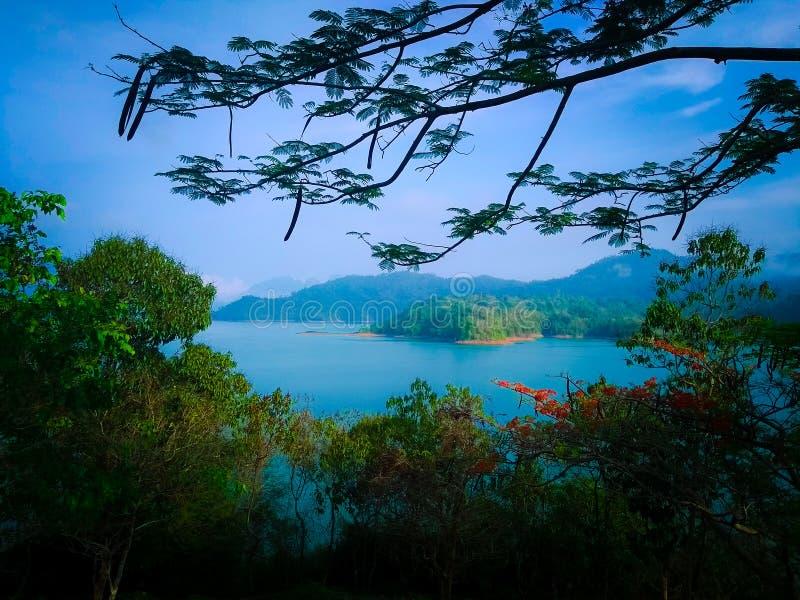 Blå sjö Mountain View med härliga blommaträd arkivfoto