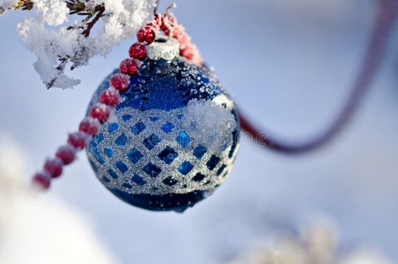 Blå snö täckt julprydnad som hänger på ett utomhus- träd arkivbilder