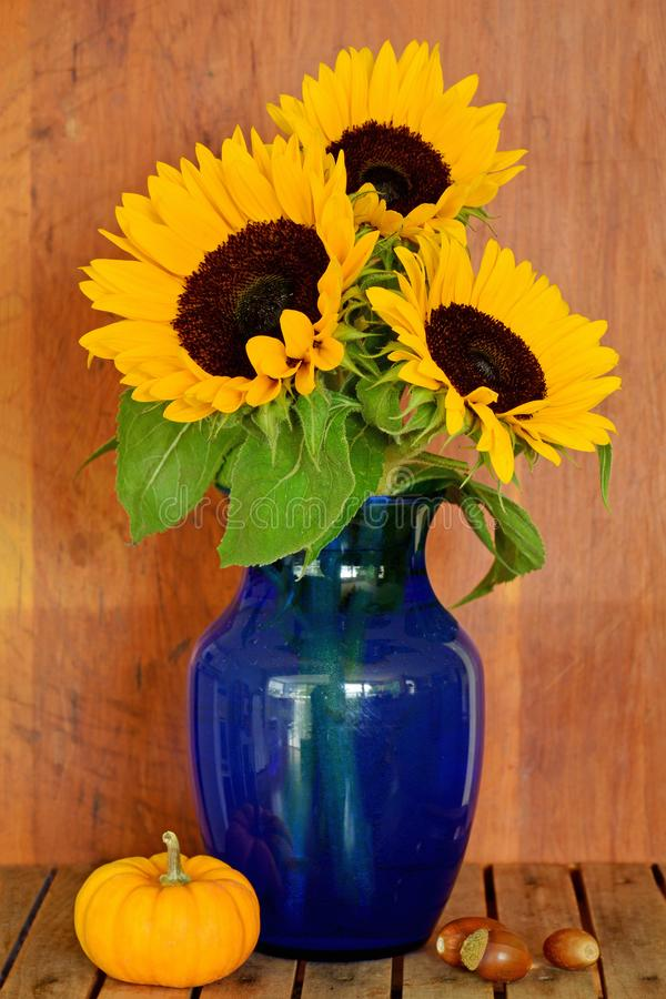 blå solrosvase fotografering för bildbyråer