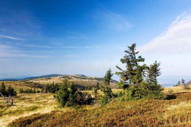 blå sommar för bergkantsky arkivbild