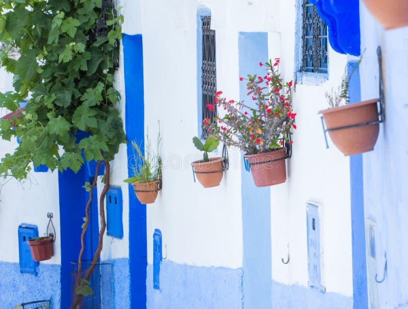 Blå stad Chefchaouen, Marocko, Afrika arkivfoto