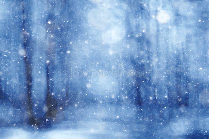Blå suddig bakgrundsvinterskog stock illustrationer