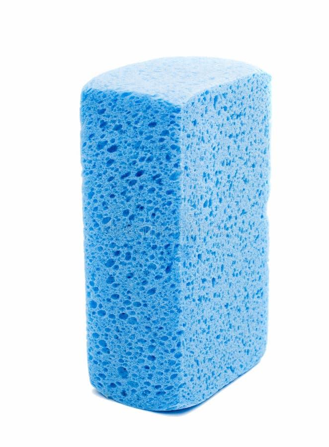 blå svamp arkivfoto