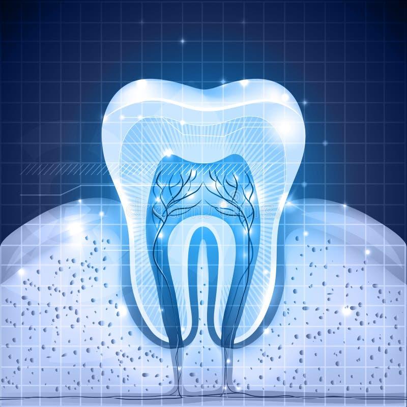 Blå tandbakgrund royaltyfri illustrationer