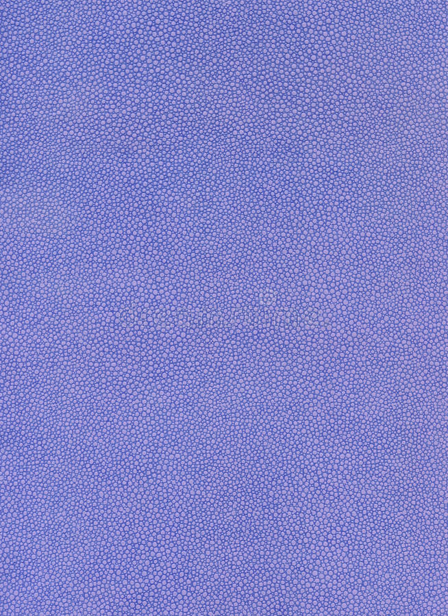 Blå texturmodell royaltyfria foton