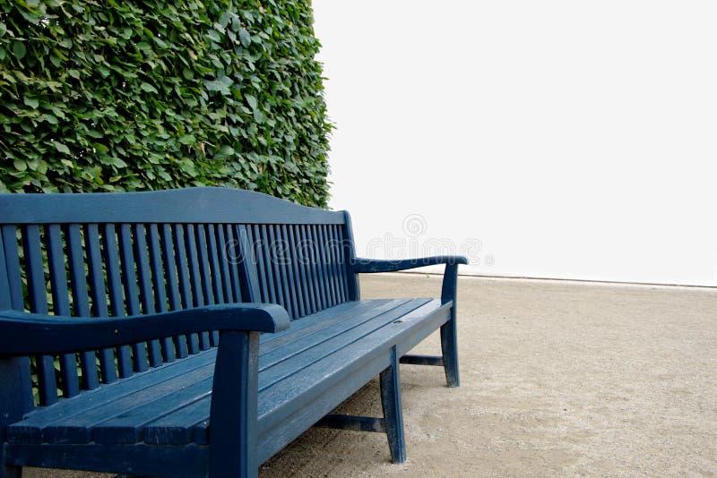 Blå träbänk med den gröna buske- och vitväggen i bakgrunden royaltyfri fotografi