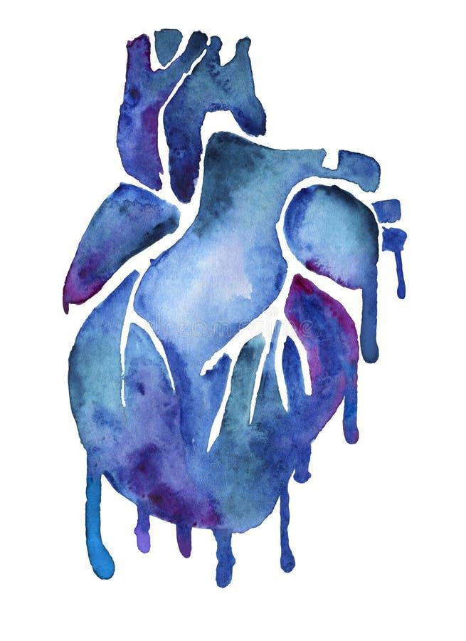 Blå vattenfärghjärta med färgrika målarfärgfläckar stock illustrationer