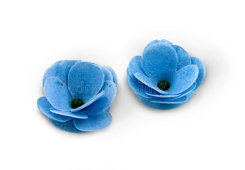 blåa blommor ämnade brunnsort två royaltyfri foto