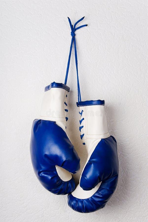 blåa boxninghandskar arkivfoton