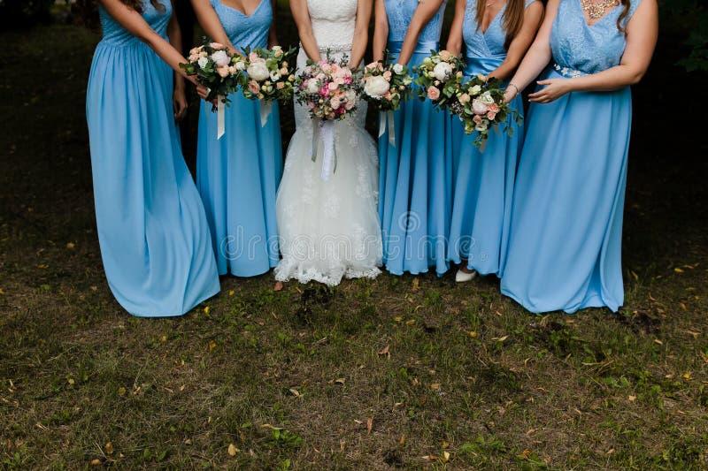 blåa brudtärnor royaltyfri foto