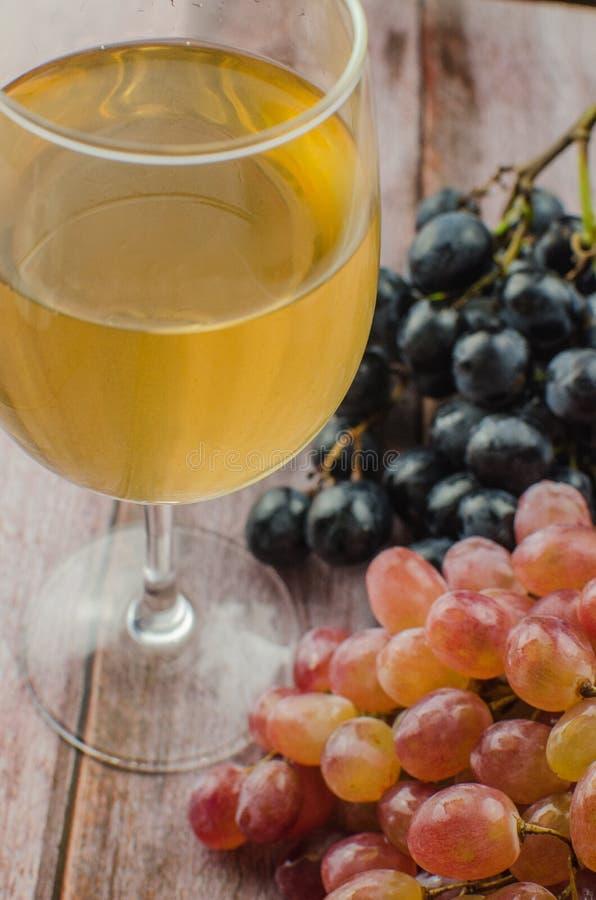 Blåa druvor med sunt äta för grönt blad, isolerat royaltyfria foton