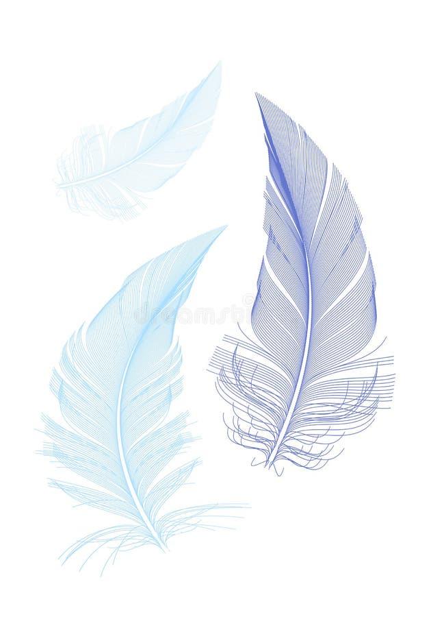 Blåa fågelfjädrar, vektor stock illustrationer