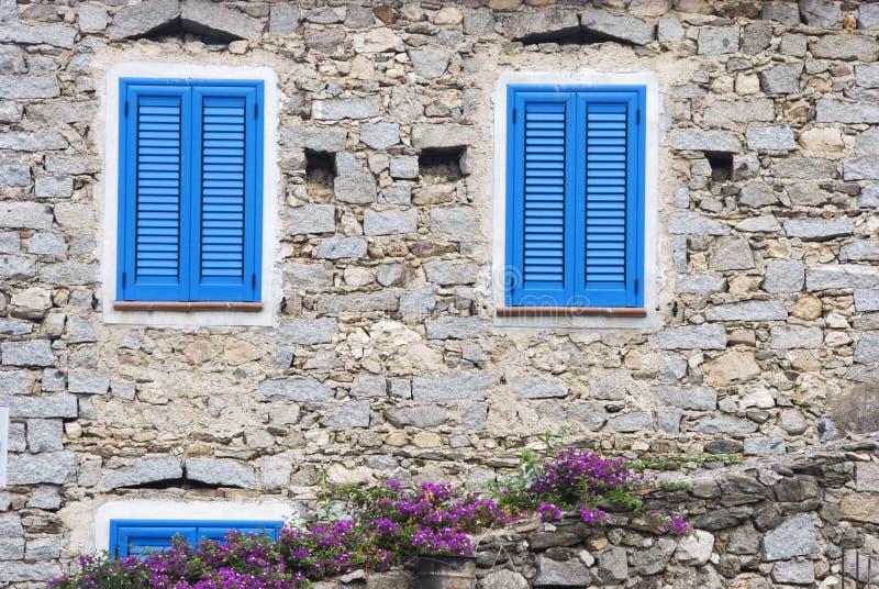 blåa fönster royaltyfri fotografi