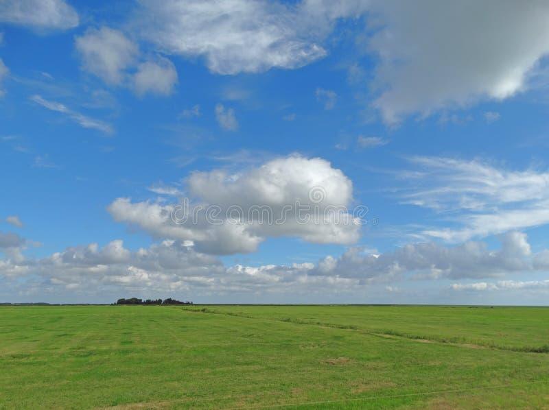 Blåa himlar med vita moln ovanför landskapet arkivbild
