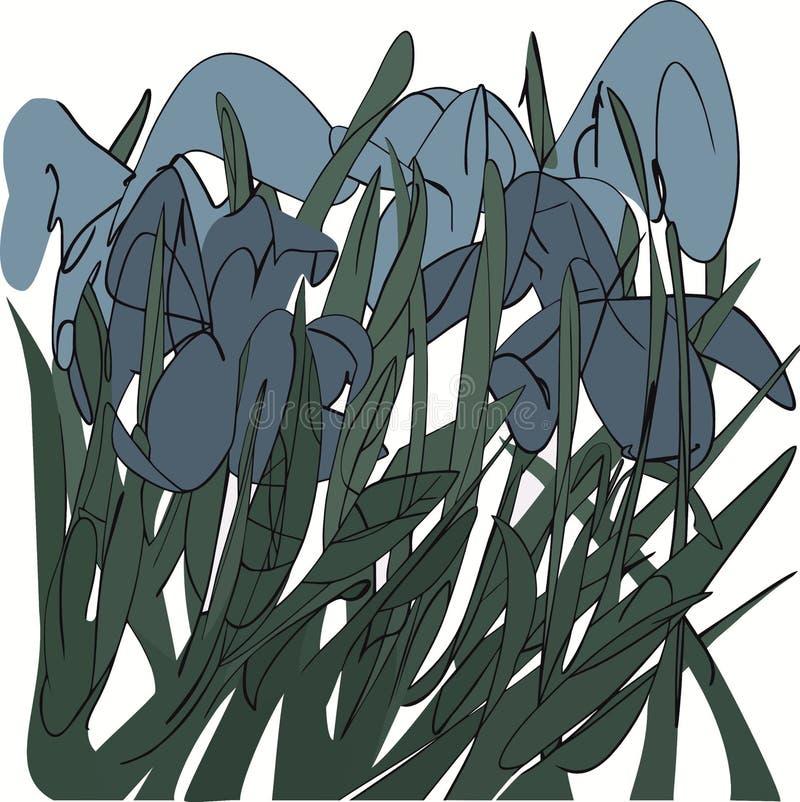 Blåa iriers i gräset, abstrakt illustration vektor illustrationer