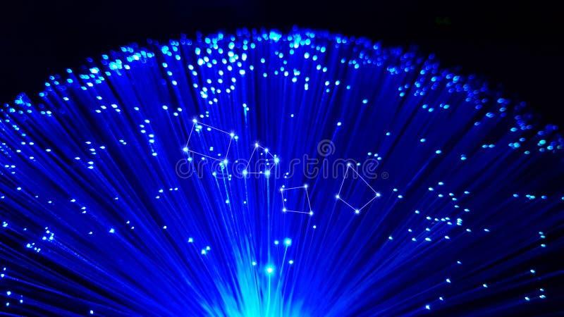 Blåa kablar för optisk fiber med skinande spetsar arkivbilder