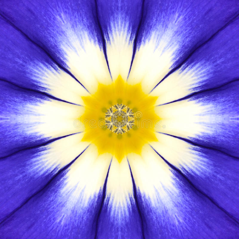 Blåa Mandala Flower Center Koncentrisk kalejdoskopdesign royaltyfria bilder