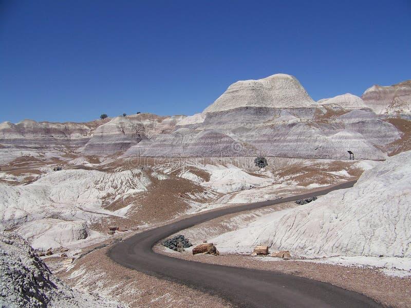 Blåa Mesa Trail 2 arkivfoto