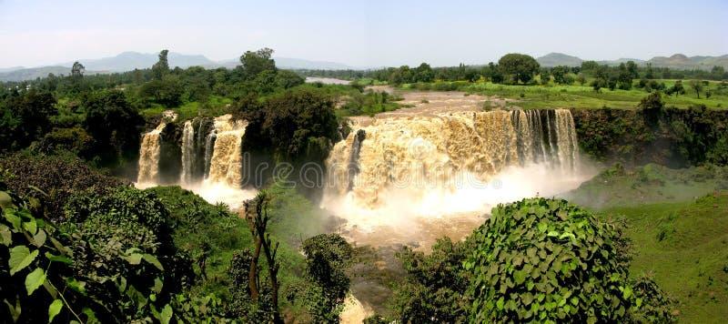Blåa Nile Falls, Etiopien (panorama) royaltyfri bild