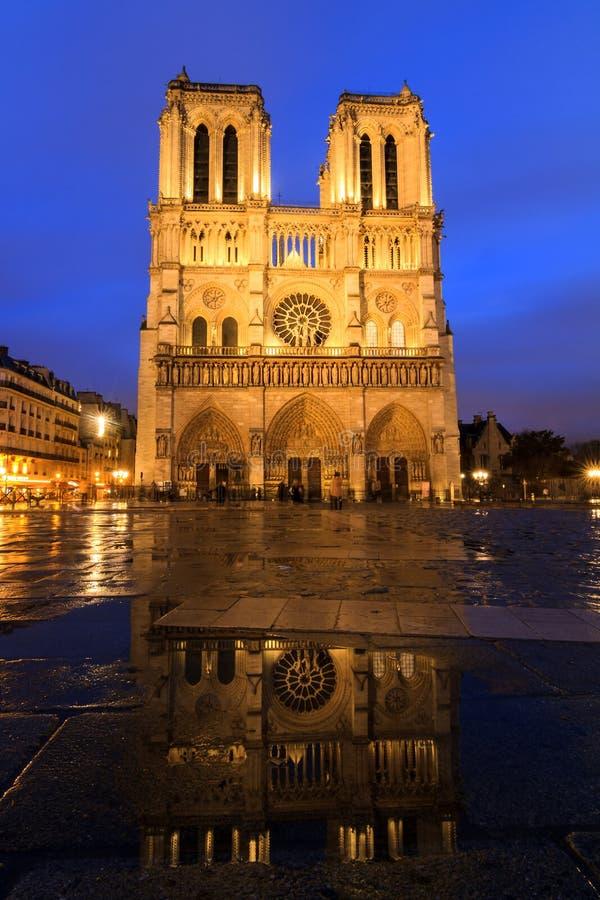 Blåa Notre-Dame royaltyfri bild
