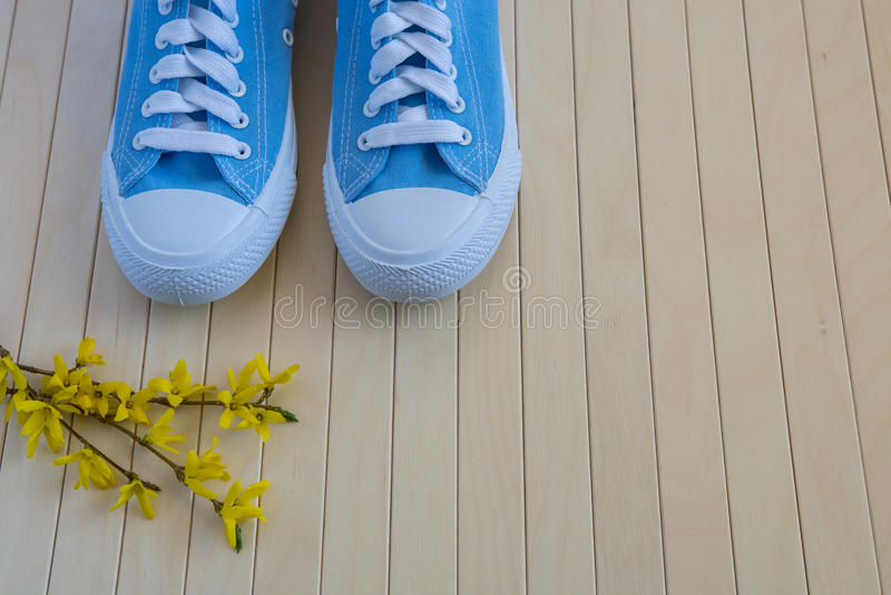 Blåa nya gymnastikskor med vårguling blommar på träbackgen royaltyfri foto
