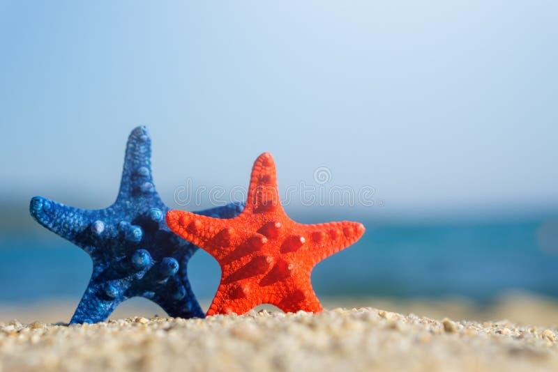 Blåa och röda sjöstjärnor som klämmas fast på sand på stranden Blått hav på bakgrund arkivbilder