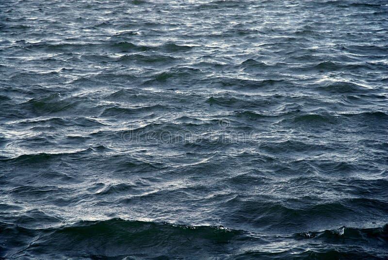 blåa waves arkivbild