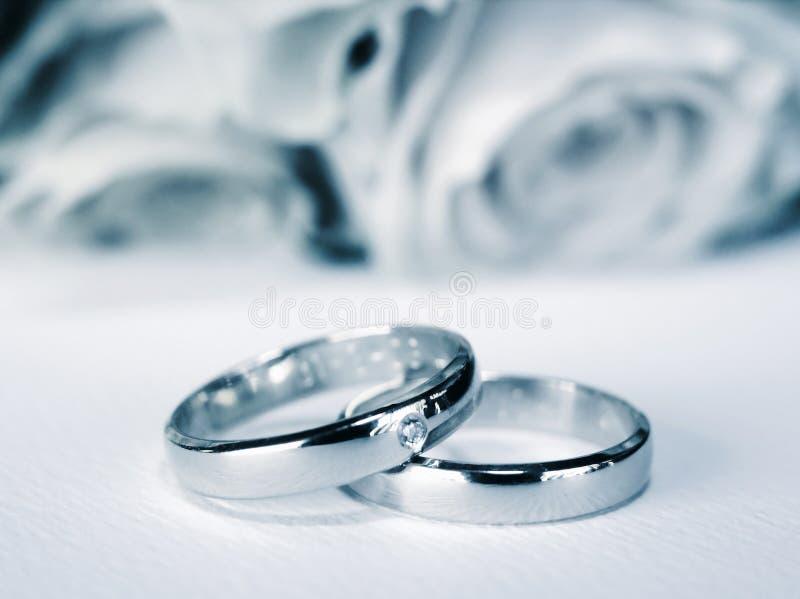 blåa weddingrings fotografering för bildbyråer
