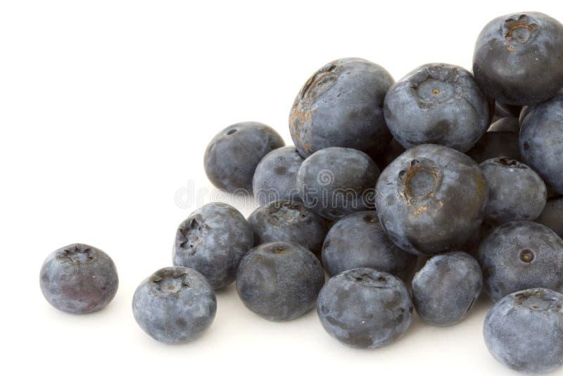 blåbär arkivfoton