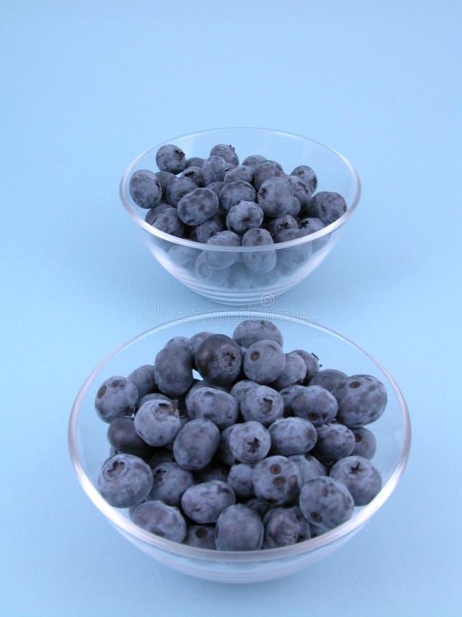 Download Blåbär fotografering för bildbyråer. Bild av sött, frukt - 996075