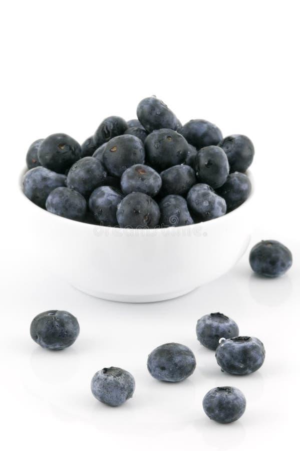 blåbär bowlar white arkivbild