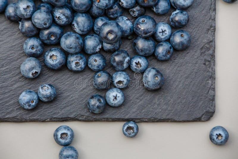 Blåbär kritiserar på plattan arkivbilder