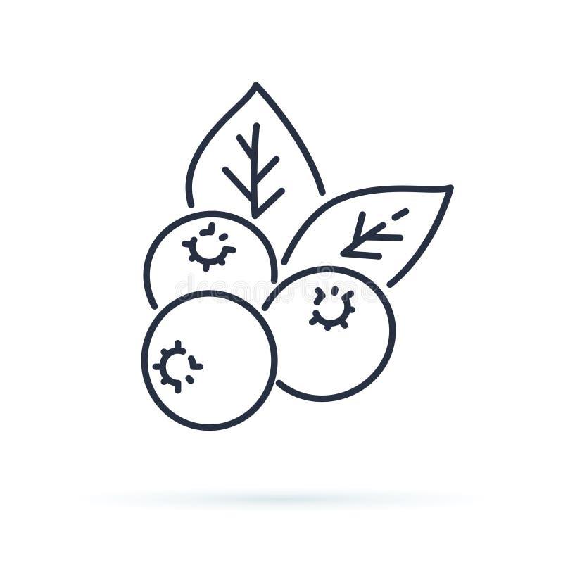 Blåbärlägenhetlinje symbol, skogbärtecken, sund matlogo Illustration av tranbäret, lingon royaltyfri illustrationer