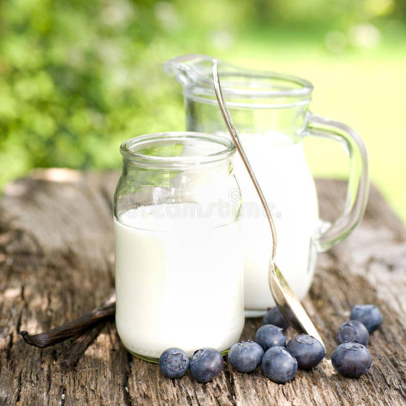 blåbäryoghurt arkivfoto