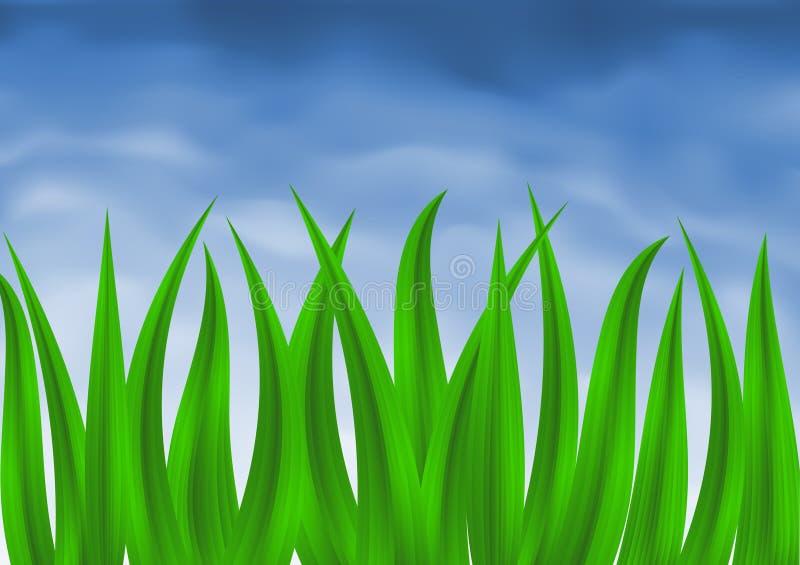 blågräsgreen över skyen stock illustrationer
