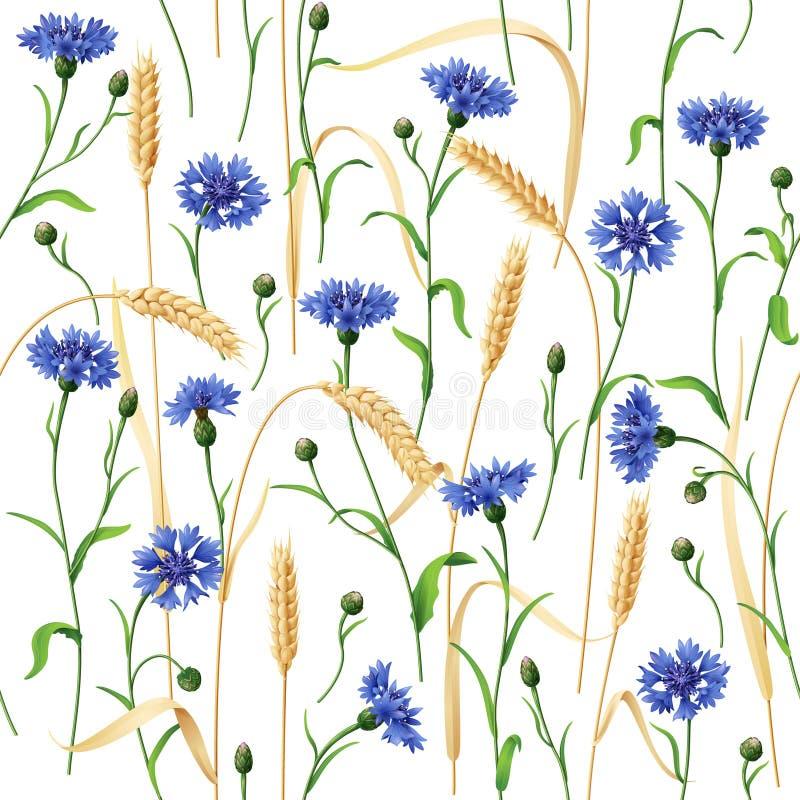 Blåklint- och veteöramodell royaltyfri illustrationer