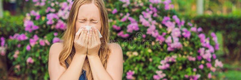Blåsa näsa för ung nätt kvinna framme av att blomma trädet BANER för vårallergibegrepp, LÅNGT FORMAT arkivbilder