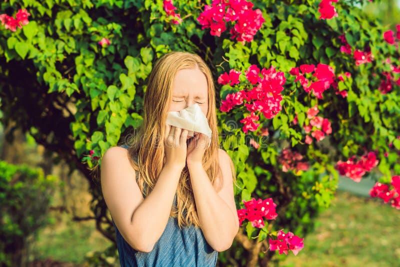 Blåsa näsa för ung nätt kvinna framme av att blomma trädet Vårallergibegrepp arkivfoto